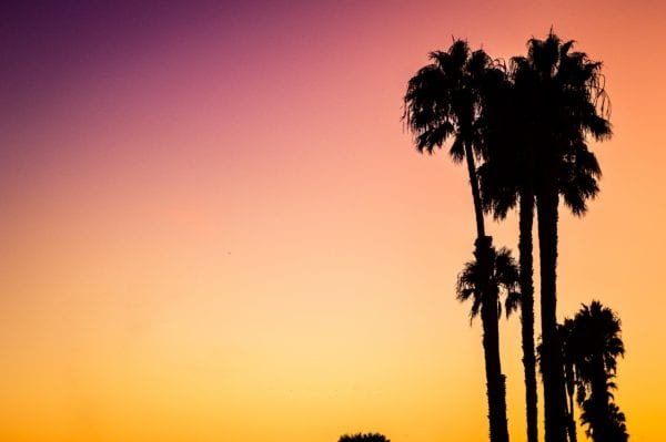 LA things to do