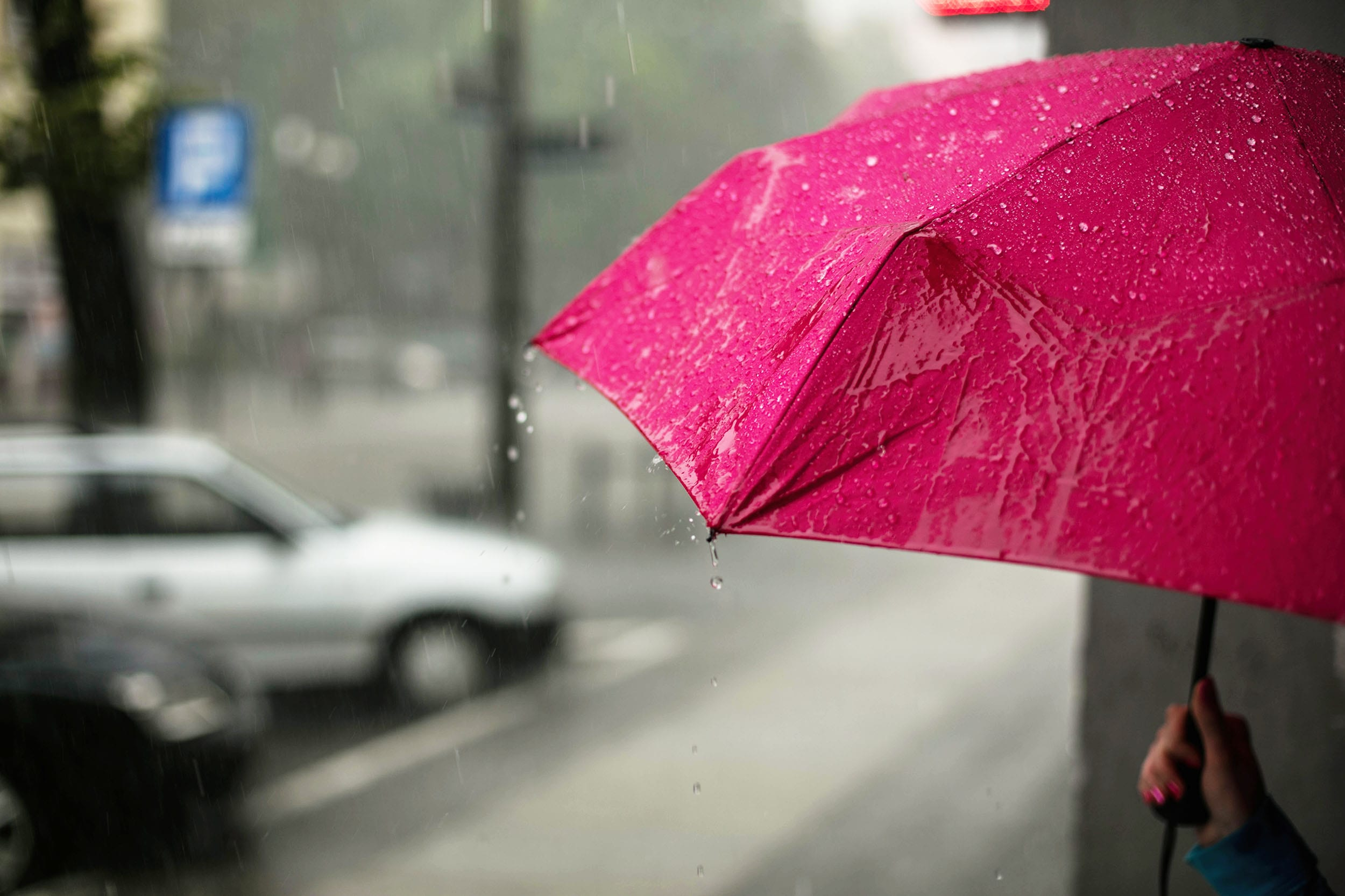 ca66195ee The Best Travel Umbrellas for Rainy Adventures