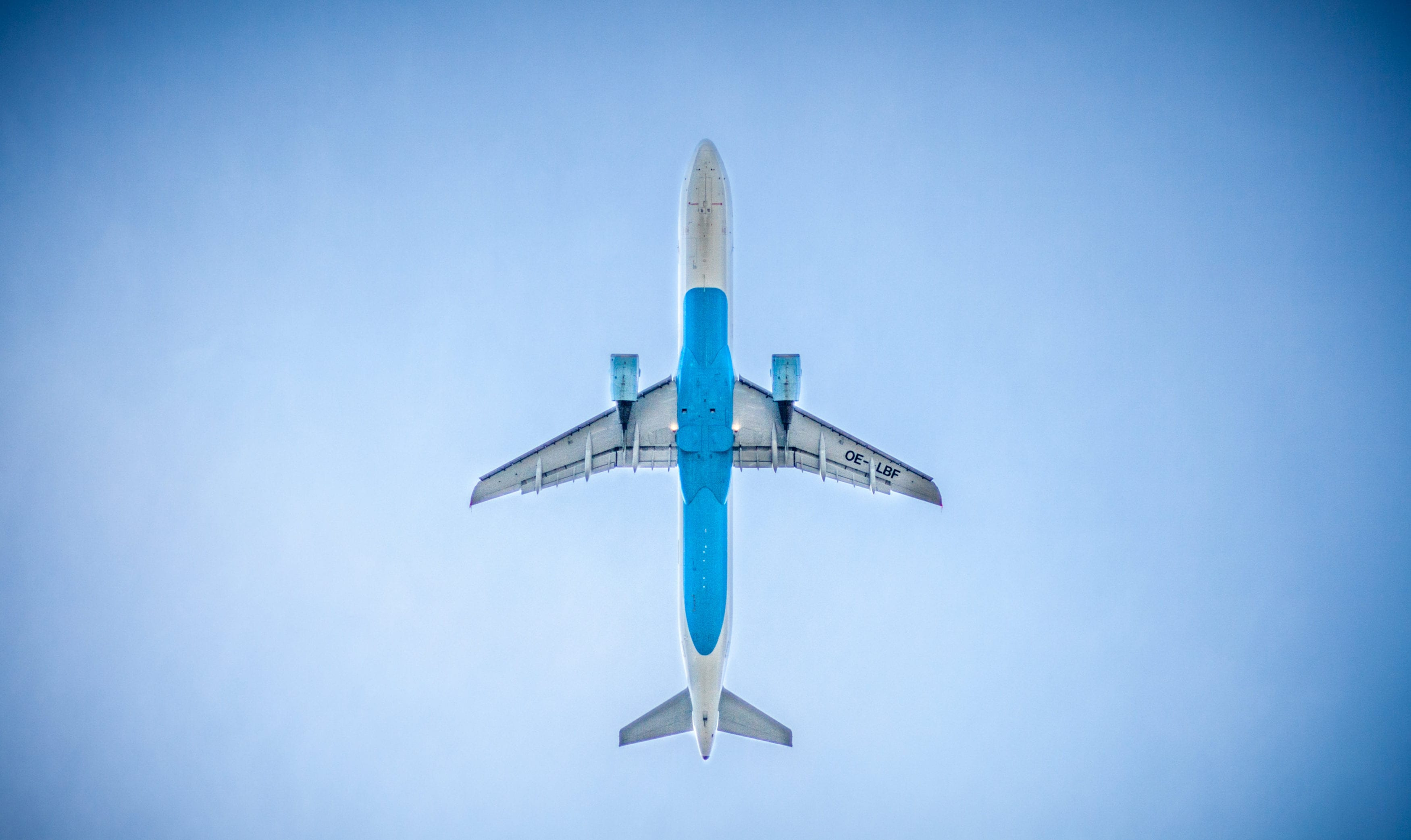 Last Minute Trips To Anywhere Finding The Best Deals Tortuga - Last minute travel deals from ewr